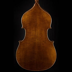 Wan-Bernadel upright bass, back view