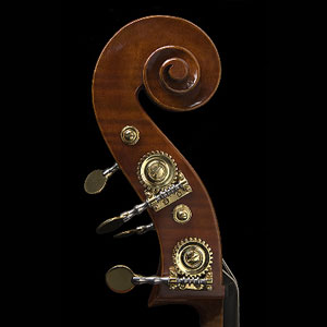 Wan-Bernadel upright bass, scroll
