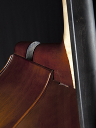 Thompson Removable Neck Bass