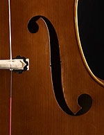 Wan-Bernadel upright bass, f-hole